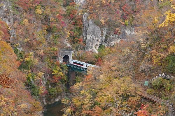 鳴子峡の電車トンネル風景