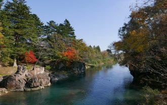 厳美渓の紅葉