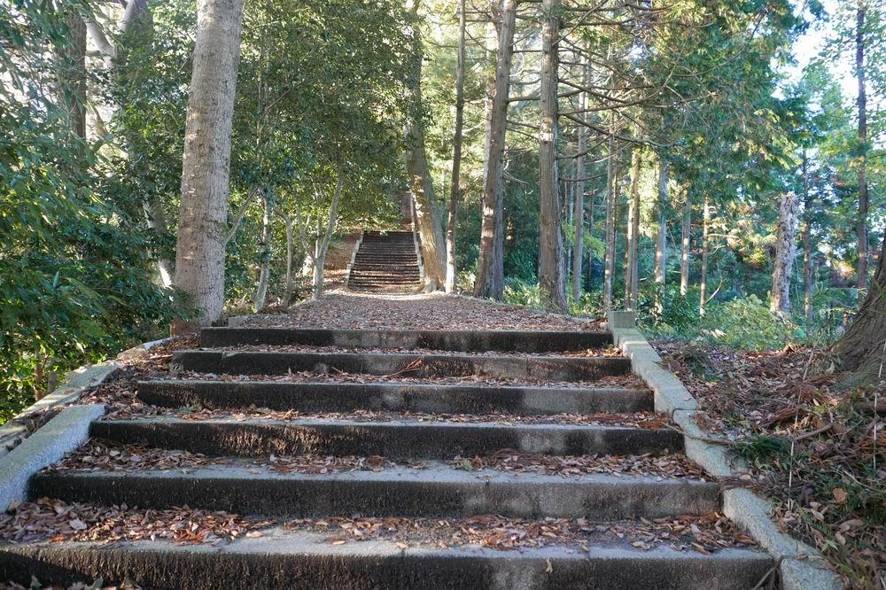 松島四大観麗観(富山)ののぼり石段の階段風景写真1