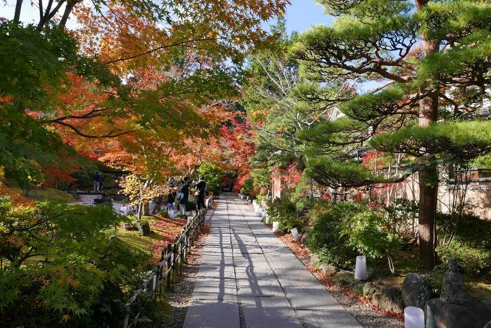 松島観光円通院の紅葉写真画像1