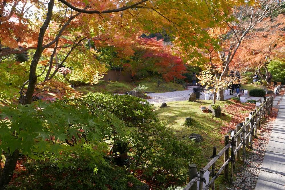 松島観光円通院の紅葉写真画像2
