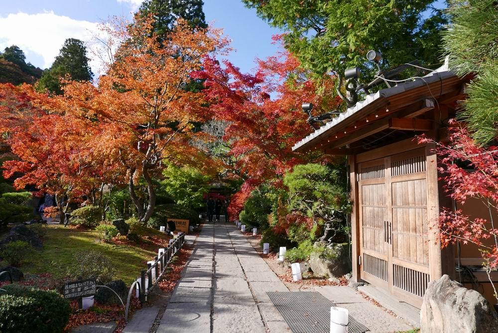 円通院の紅葉写真庫裏が見事です。