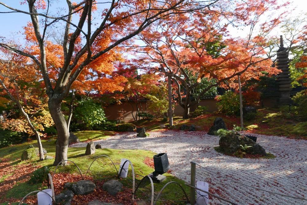 松島観光円通院の紅葉敷き詰めた石写真画像
