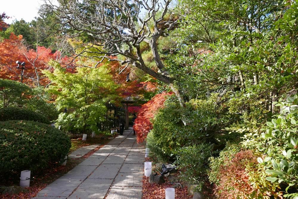 松島観光円通院の石畳と紅葉がよくマッチした写真画像