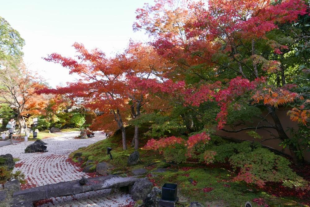 松島観光円通院の紅葉楓(?)の赤が鮮やかな写真画像