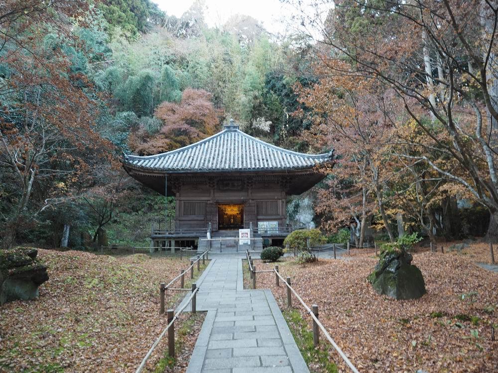 三慧殿の晩秋の風景写真画像