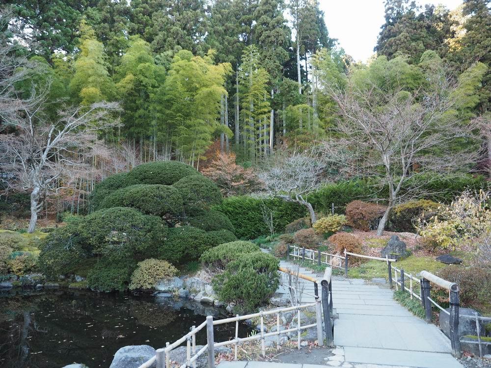 円通院の晩秋の池の風景写真