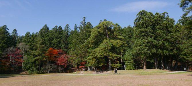 毛越寺庭園の秋の紅葉風景