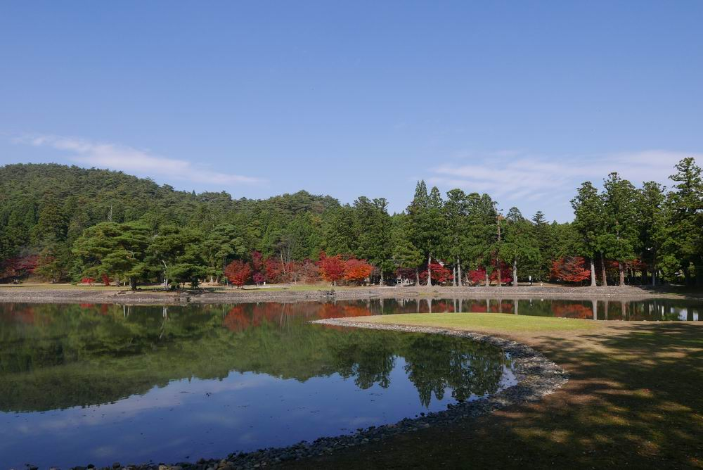 毛越寺庭園秋の紅葉の写真