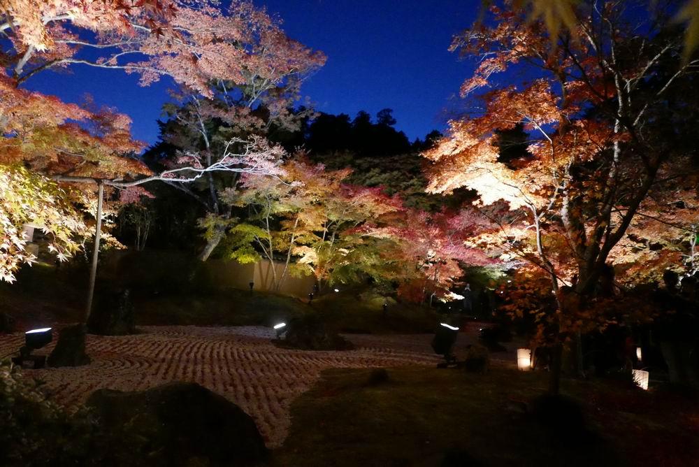 松島観光円通院のライトアップ写真画像1