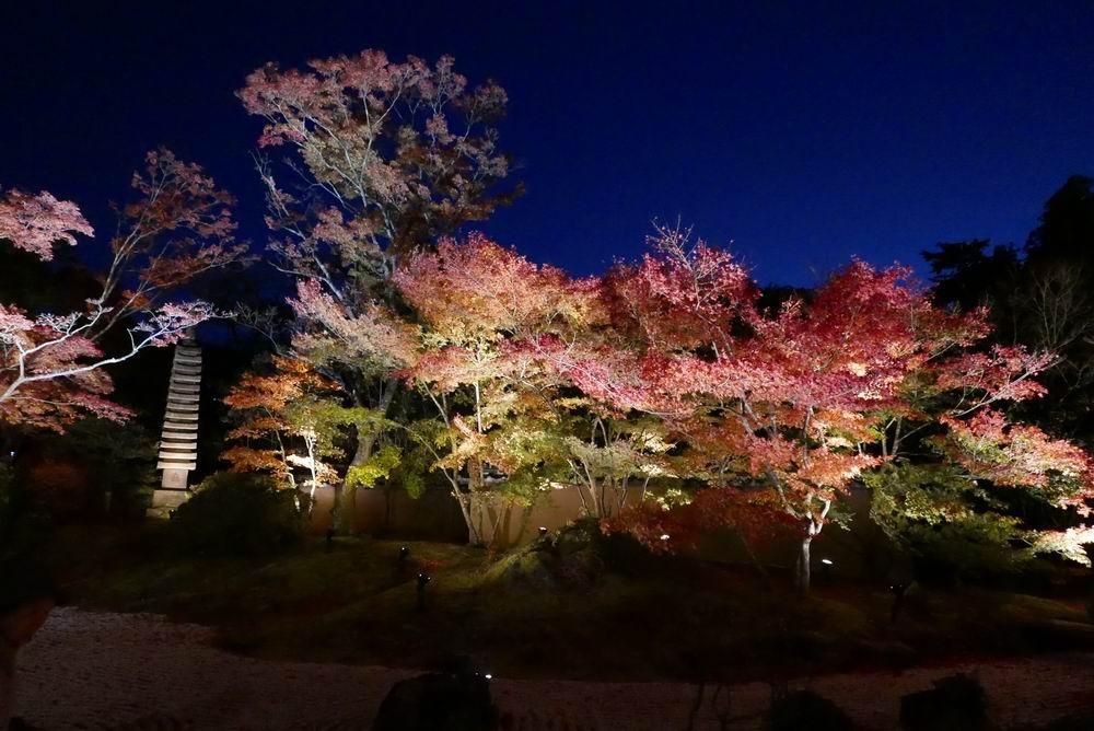 松島観光円通院のライトアップ写真画像3