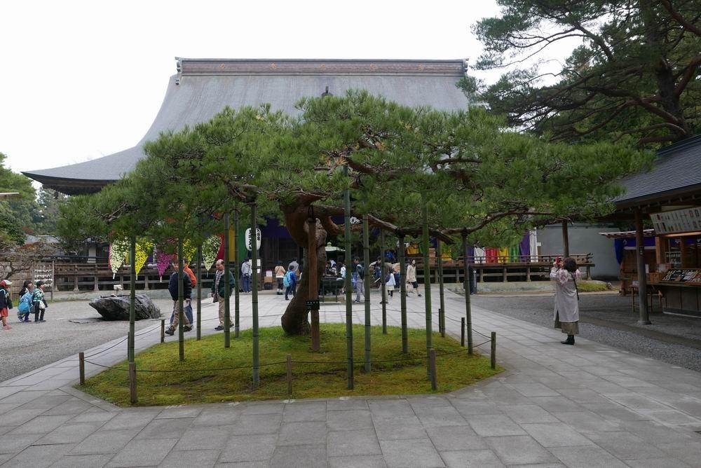 中尊寺境内の風景写真