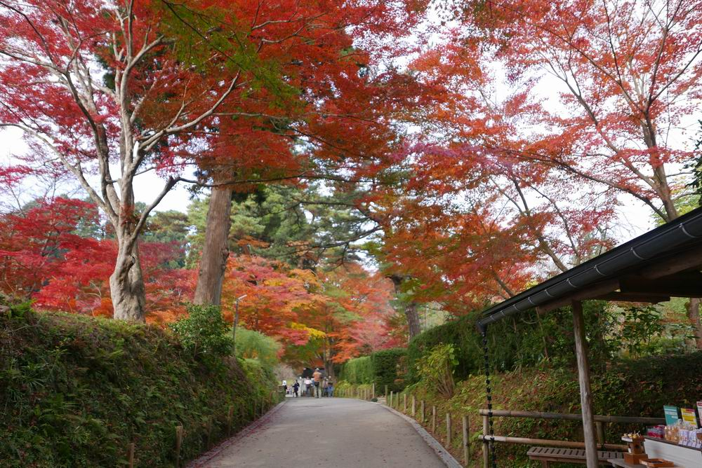 中尊寺の秋の紅葉風景