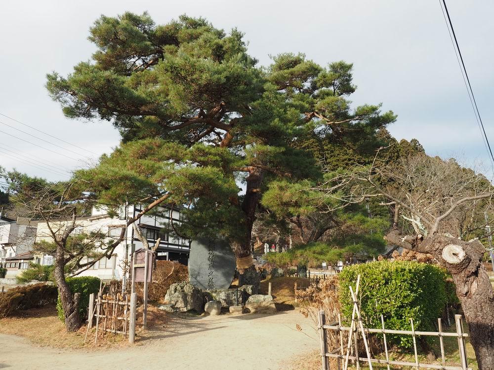 武蔵坊弁慶の墓の全景写真