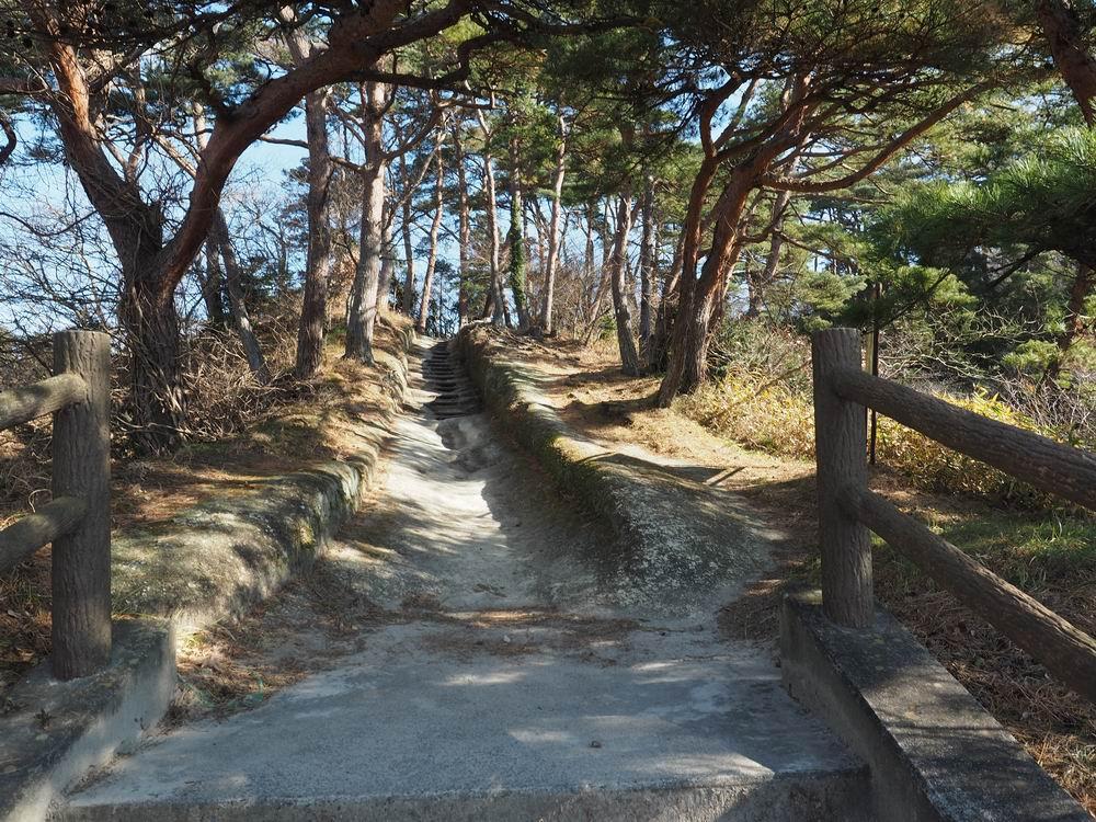 大高森登山道の風景写真