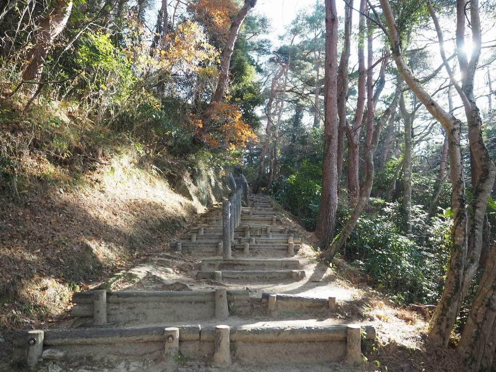 大高森登山道の風景写真2