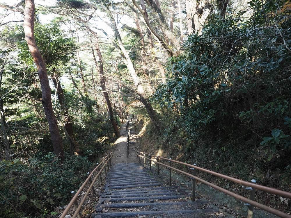 大高森登山道風景上から見てみる写真