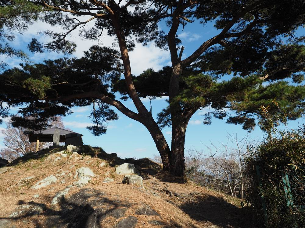 大高森展望台の風景写真