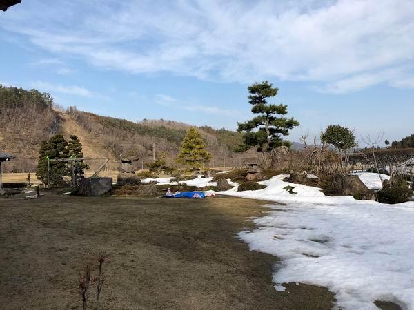 雪解けの芝の風景