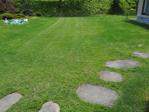 芝刈り完了した写真
