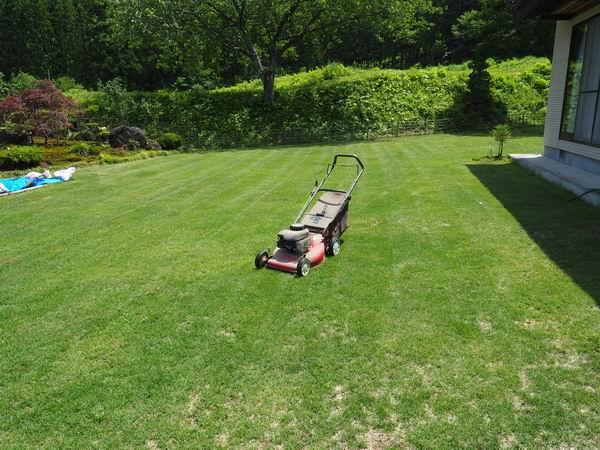 芝刈り機マーレーの写真
